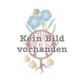 DÖRNTHALER BIO-Kokosmehl